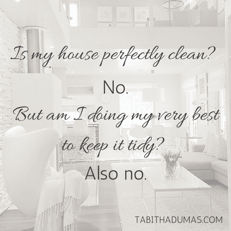Realistic house keeping! Is my house perfectly clean_ No.But am I doing my very best to keep it tidy_ Also no.