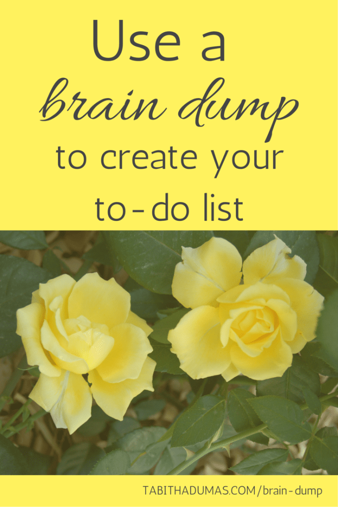 Use a brain dump to create your to-do list. Get organized and clear your head! Step by step instructions. From Tabitha Dumas