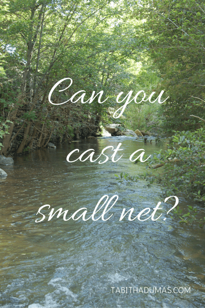Can you cast a small net- A great post about avoiding the trap of trying to a bunch of stuff to see what sticks. by tabithadumas.com