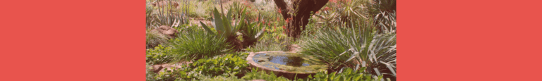 BTA fountain header