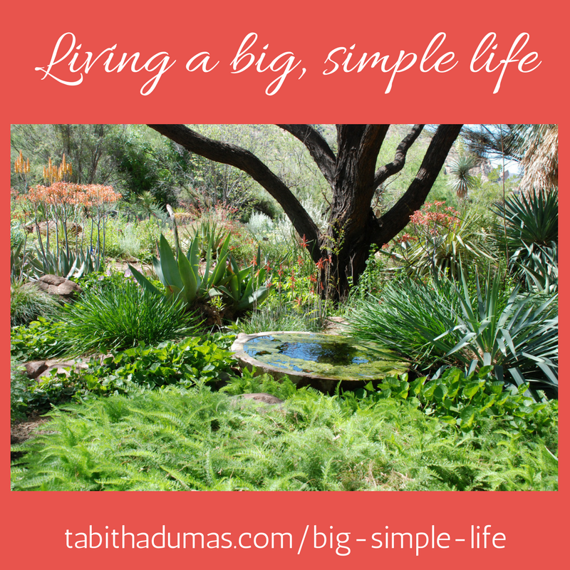 living a big simple life -tabithadumas.com