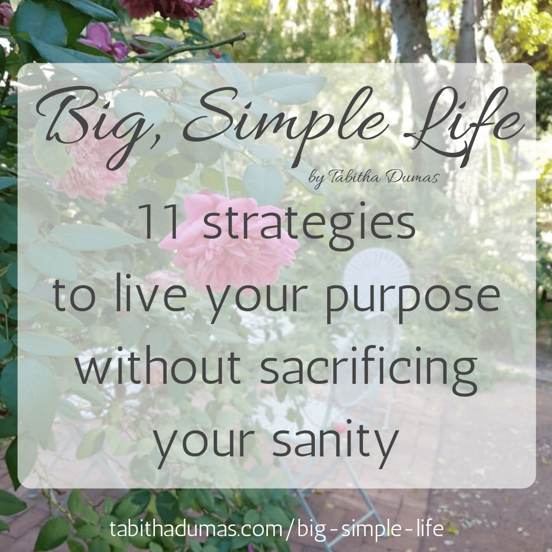 Big, Simple Life book by Tabitha Dumas 11 strategies to live your purpose without sacrificing your sanity