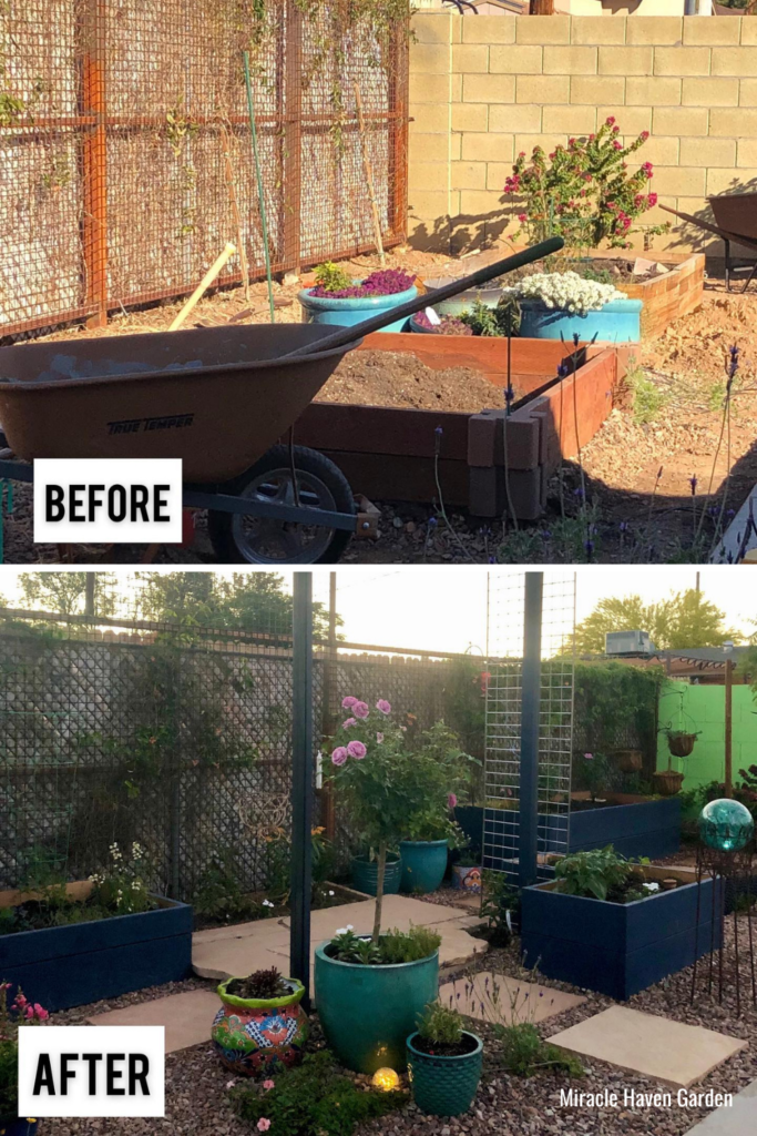 Miracle Haven Garden back yard garden before and after garden design kristi caggiano