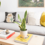 Tips for living clutter free from a formerly messy person
